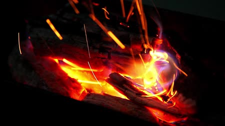 ölen : Fire Embers Burning in the Bonfire Fireplace with Full HD