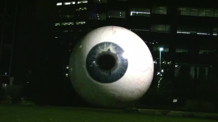 bird eye : Large Eye In Dallas Texas