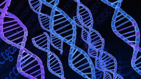 render : A seamless, looping 3D animation of DNA Helix floating in a dark background of Genetic Code.