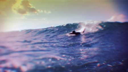 серфер : Surfer swimming the wave.
