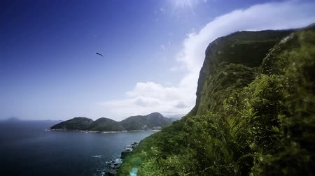 brasil : Wind blowing on Pan de Azucar mount in Rio de Janeiro, Brazil. Day light, blue sky and vegetation. HD