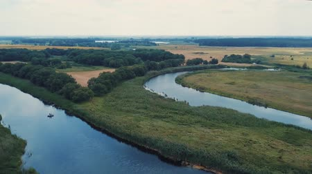 zálesí : Aerial footage of green forest and blue lake on a sunny cloudy day little bit windy too Dostupné videozáznamy