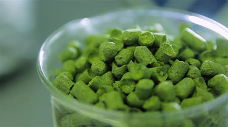 micro brewery : Hops  Stock Footage