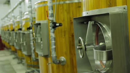 bira fabrikası : production of live beer brewing
