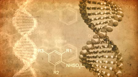ДНК : DNA rotate. Abstract background old brown paper. Loop. Стоковые видеозаписи