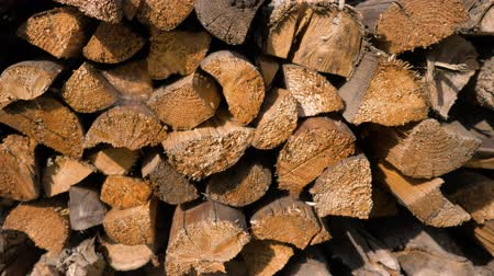 machado : Logs of firewood neatly layered in the woodpile