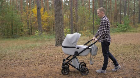 отцовство : A young father walks with a stroller in the park. A man with a newborn baby. Стоковые видеозаписи