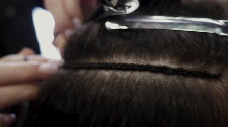 foreigner : Hairdresser hair extensions brunette girl. Braiding braids for subsequent hair extensions. 4K Stock Footage