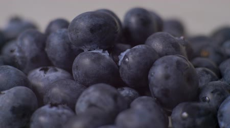 bondade : Detail of Blueberries. Macro trucking shot. 4K resolution top view.