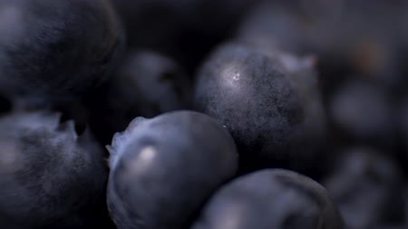 field kitchen : Detail of Blueberries. Macro trucking shot. 4K resolution top view.
