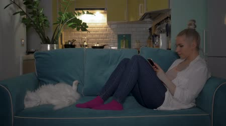 cheated : A young woman uses the phone sitting on the couch in the evening with a cat. 4K