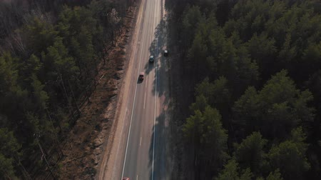 magas szög : Air view as the car rides on the road through the forest. The car goes through the forest. Aerial view 4K Stock mozgókép