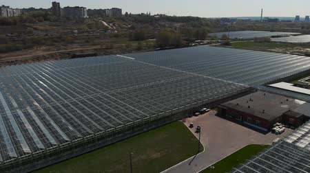 glare : Camera fly over the greenhouses. Aerial shot. Geometry in industrial production. Perfectionism in the agricultural sector. The camera flies around the greenhouses showing the scale of production. 4K
