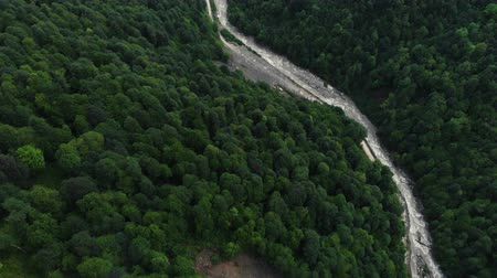 Top Down view of Fast Moving River with Rapids Surrounded by Pine Forest. Shot in Sochi. Aerial view of the mountain river flowing at the foot of the mountains. 4K Wideo
