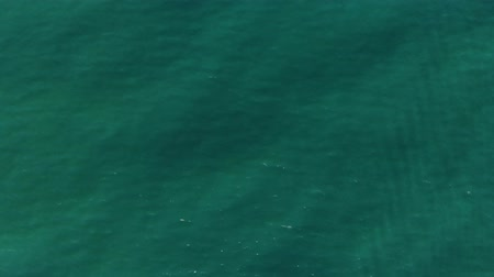 Aerial top down view from high altitude of green sea water texture. The camera flies over the water, a view of the water surface. Background of the water surface. 4K aerial view Wideo