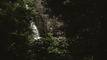 The waterfall can be seen in the distance through the gap between the trees. Exit from the forest to the waterfall