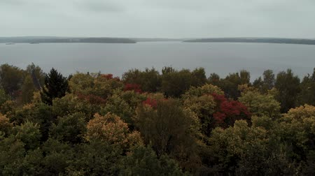 The drone flies low over the forest towards a large lake. Aerial view 4K