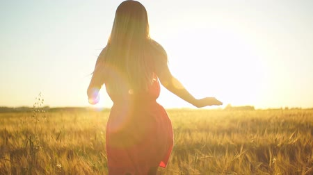 rocks red : A girl in a red dress runs across the field at sunset