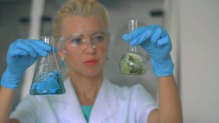 scientific : Female Researcher Examining a Test Tube In a Laboratory