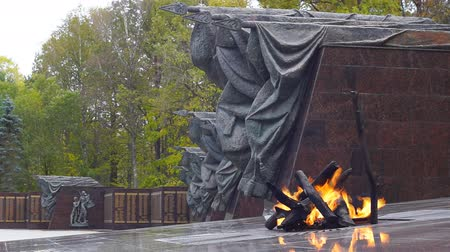 guerrilla : Eternal flame at the memorial Partisan glade in Bryansk region, Russia