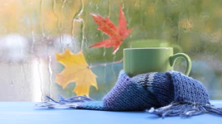 video footage green mug in blue scarf on the background of autumn Stock Footage