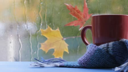 uznání : video footage red mug in blue scarf on a background of autumn
