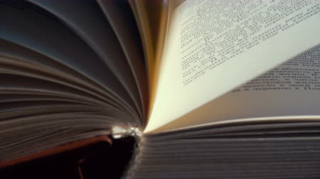 literatura : pages of opened book on a wind Stock Footage