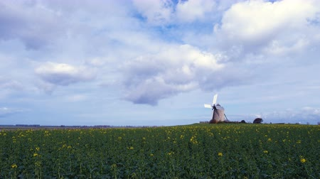 malom : old windmill at the field
