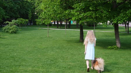 itaat : child girl training a dog on a green lawn Stok Video