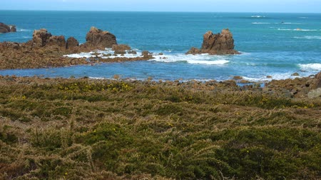 розы : Rocky Atlantic ocean coast in Brittany,France