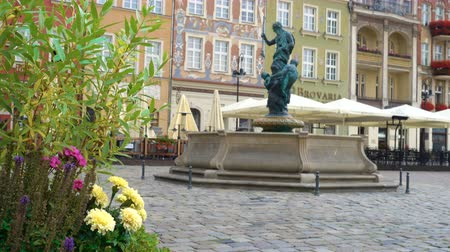 flowerpots : flowers on the Old Market Square Rynek in Poznan, Poland Stock Footage