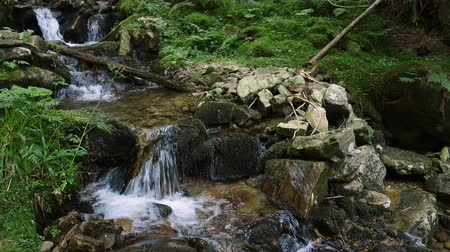 beautiful mountain creek flows over boulders with moss at the shady forest Stock Footage