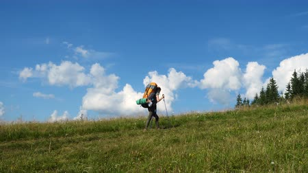 girl hiker with the backpack on a grass hill at the sunny summer day
