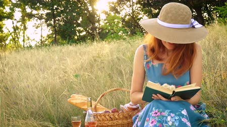 proutěný : girl with book on a picnic at the summer field