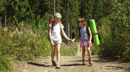 outside : two girls go hiking with backpacks on a forest road bright sunny day