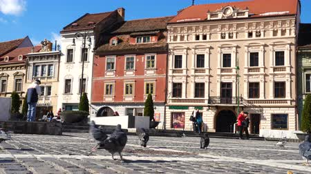 holubice : BRASOV, ROMANIA - NOVEMBER 01, 2017: view of the main square of romanian town Brasov
