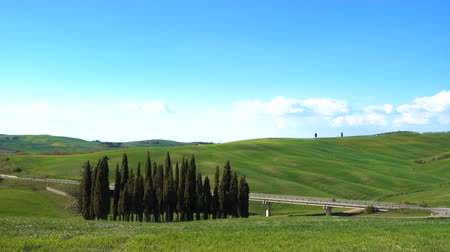 farmhouse : Beautiful Tuscany landscape with the cypresses trees growing along the road, Tuscany, Italy Stock Footage