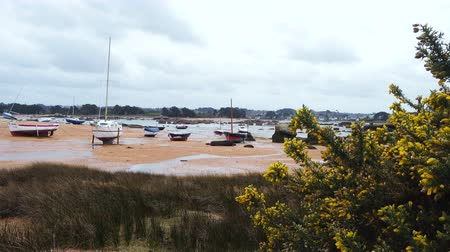 bretagne : Yachts and boats during ocean low tide Stock mozgókép