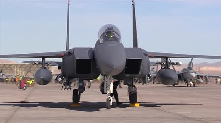 suéter : f 15e eagle at red flag