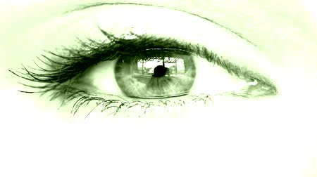 keresik : womens eye close-up green