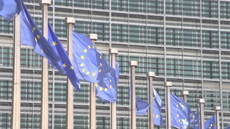 europeu : slowmotion EU flags Brussels
