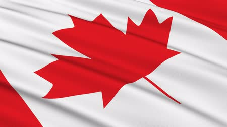 kanadai : Flag of Canada waving in the wind - very highly detailed fabric texture - seamless looping