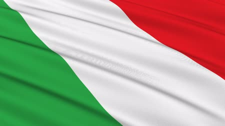 İtalyan : Flag of Italy waving in the wind - seamless loop