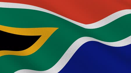 güney : Flag of South Africa waving in the wind - seamless loop