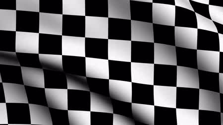 quadriculada : Checker Flag - very highly detailed race flag slowly waving in the wind