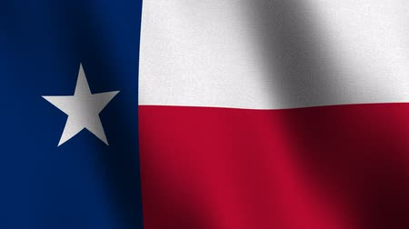 State flag of Texas waving - seamless loop Stock Footage