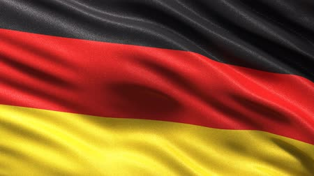 almanca : Seamless German Flag Stok Video