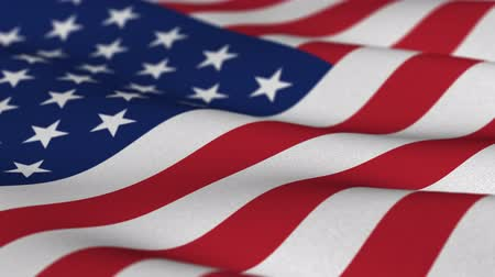 vlastenectví : Shallow depth of field - USA flag waving in the wind - highly detailed fabric texture - seamless looping