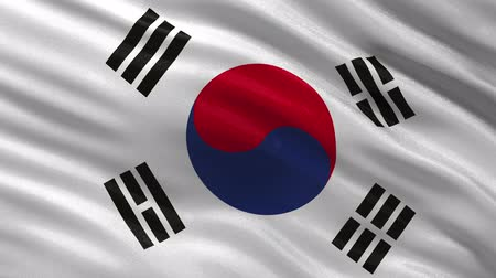 güney : Flag of South Korea waving in the wind - seamless loop