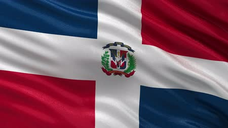 dominikana : Flag of the Dominican Republic waving in the wind - seamless loop Wideo